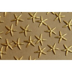 4 pc. Small Raw Brass Starfish: 14mm by 12mm - Made in USA | RB-420