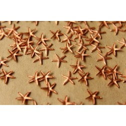 14 pc. Tiny Raw Copper Starfish: 9mm by 8.5mm - made in USA | RB-516